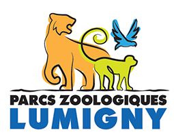 Parcs Zoologiques Lumigny, parcs zoologiques destinés à l'élevage des félins et primates à Paris, Seine et Marne