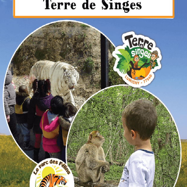 Groupes scolaires 2019